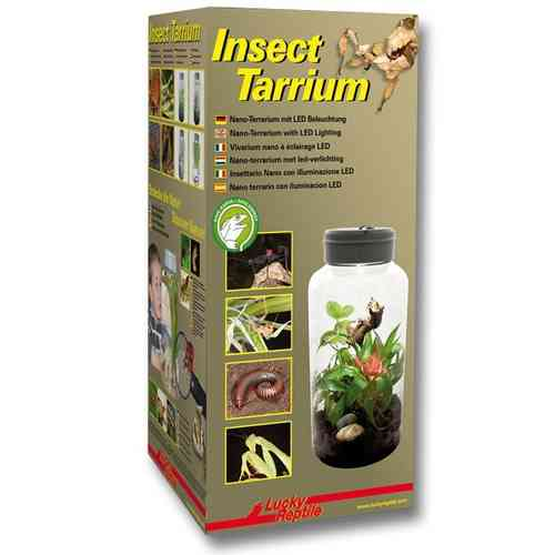 Lucky Reptile InsectTarrium 5L, mit LED-Deckel